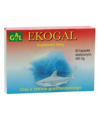 EKOGAL
