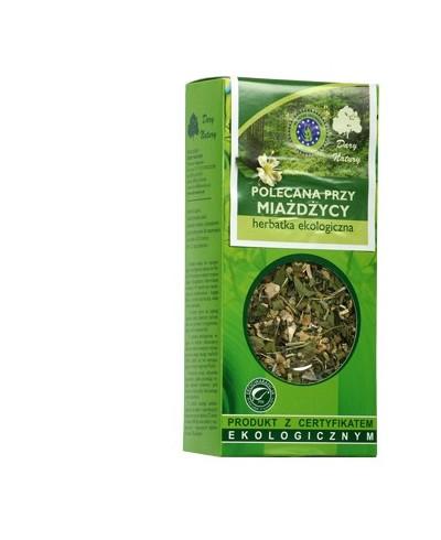 POLECANA PRZY MIAŻDZYCY Herbatka ekologiczna