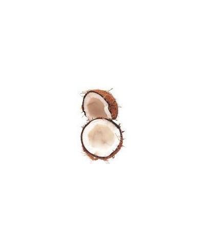 Olej kokosowy BIO, tłoczony na zimno, 50g